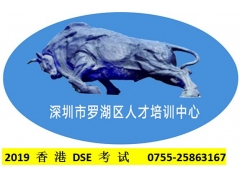 2019香港DSE考试
