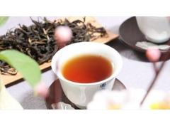 润肺清热茶