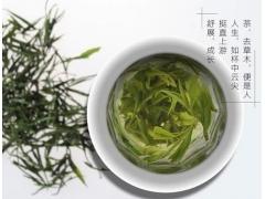 蒸青绿茶的品质特点特征