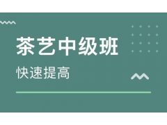 2019年茶艺师中级认证课程培训班